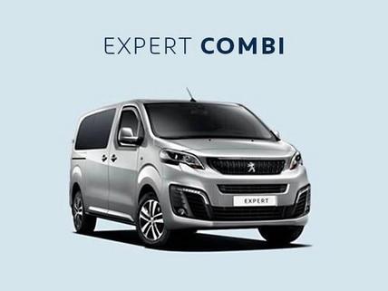 expert_combi